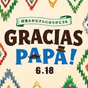 web_papa_s